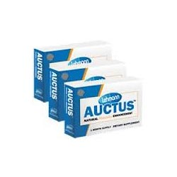 Auctus – Does Auctus Work?