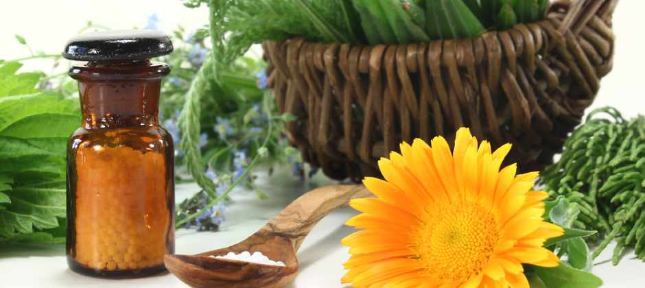 Herbs for Impotence