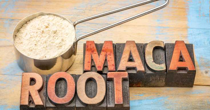 Maca Root Use