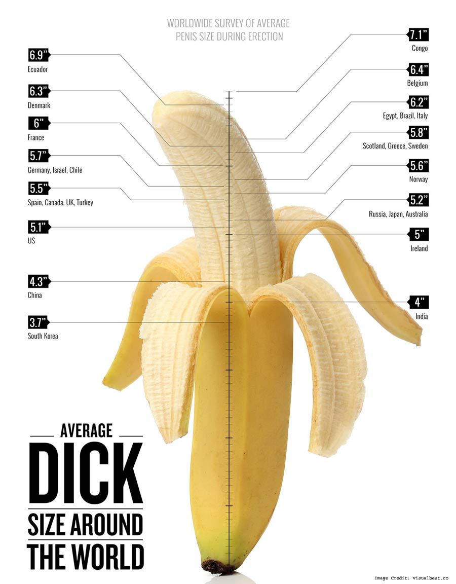 Average Penis Size Hard