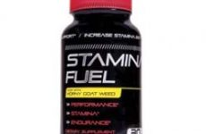 STAMINA FUEL Review: How Does STAMINA FUEL Work?