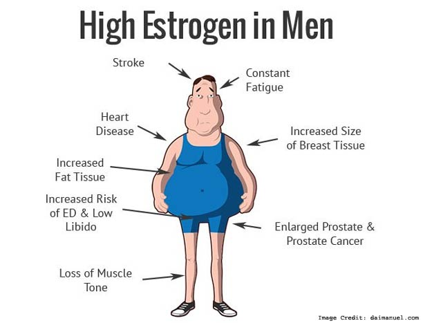 High Estrogen in Men