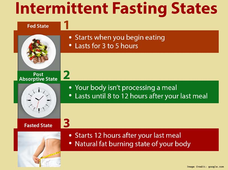 Intermittent Fasting Info