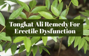 Is Tongkat Ali The Most Effective Remedy For Erectile Dysfunction?