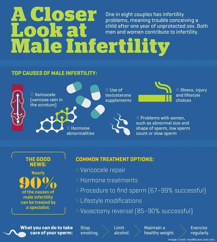 Male Fertility Info