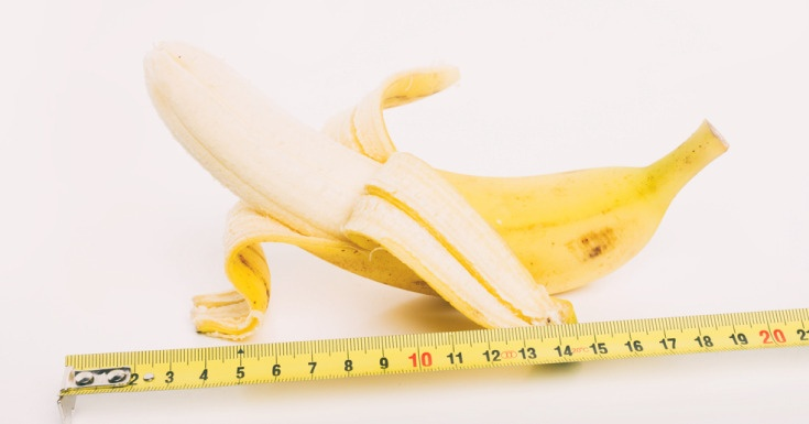 The Average Male Penis Size